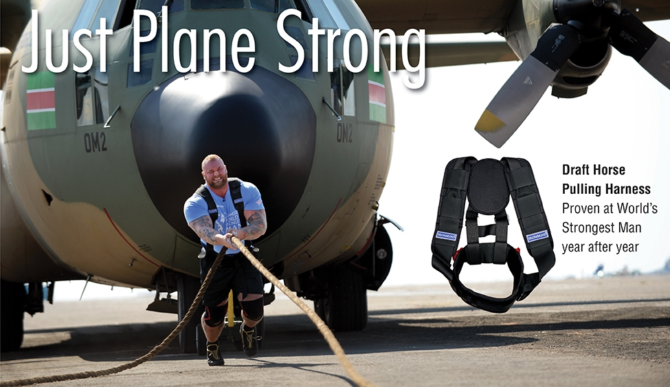 Draft Horse Pulling Harness – Just Plane Strong